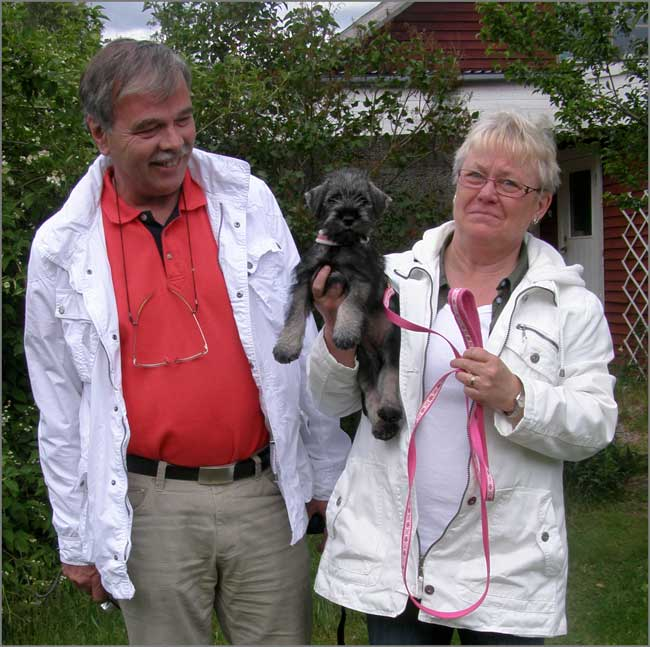 Aysa hämtas av Börje och Stina Johansson från Trångsund